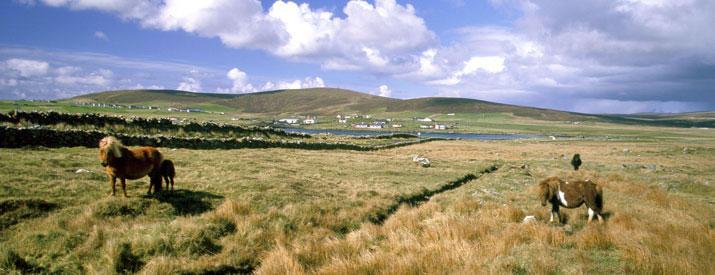 Haroldswick on the island of Unst, in Shetland